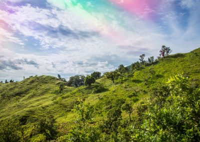 New Branch - El Salvador 2015 - 09 1080p after